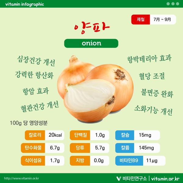 양파 영양성분 및 효능